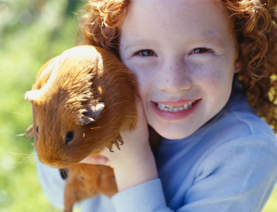 Do Tell: Do You Associate Some Pets With Certain Age Groups?