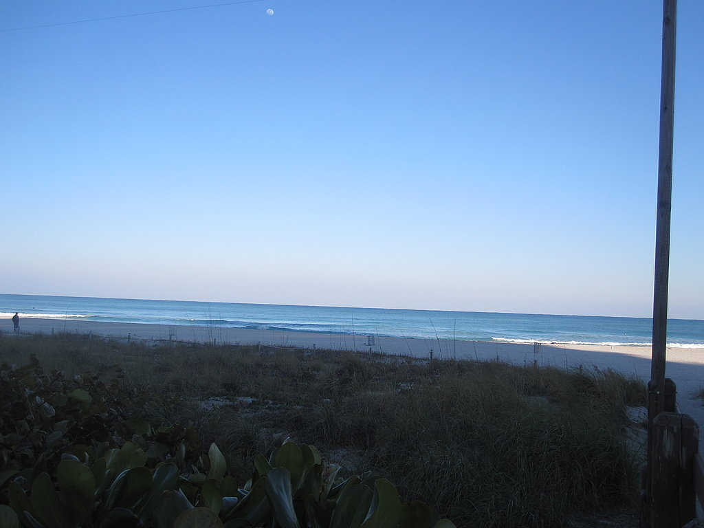 The glorious view of the beach!