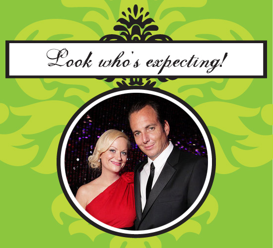 Amy Poehler and Will Arnett Expecting Second Baby
