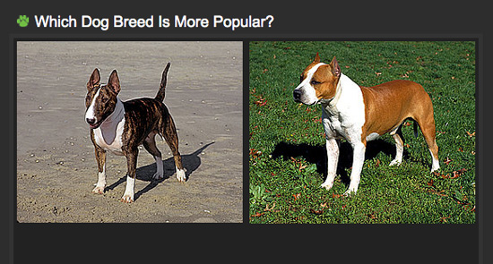 What Do You Call An Expensive Breed Of A Dog