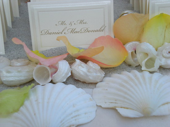 The escort cards were propped on a sand covered table. the florist scattered loose petals and shells throughout.