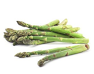 Asparagus and Goat Cheese Panini Recipe 2010-04-20 14:43:11