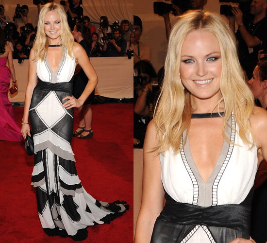 Malin Akerman at 2010 Costume Institute Gala
