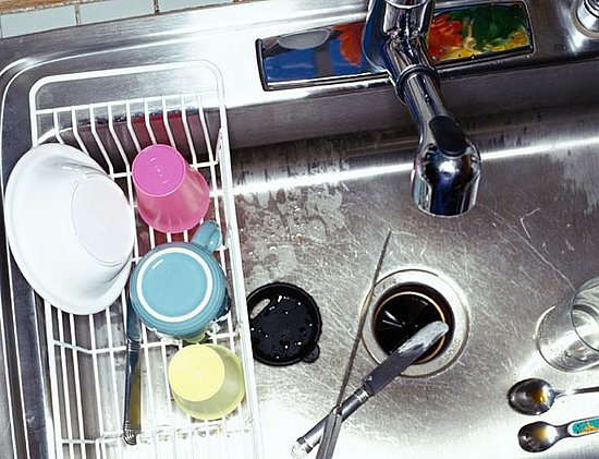 Does Your Sink Have a Garbage Disposal?