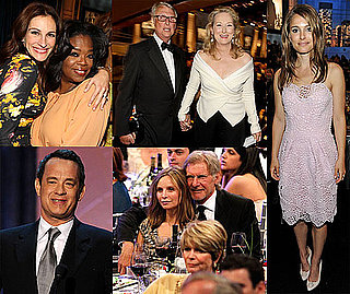 Pictures of Julia Roberts, Meryl Streep, and More Toasting Director Mike Nichols