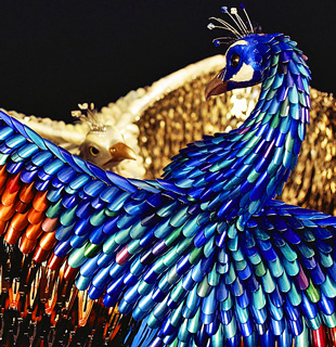 Laurel Roth Peacocks Exhibition Pics