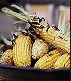 Grilled Corn with Parmesan Butter