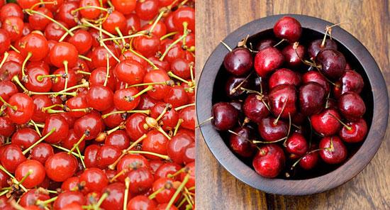 Sweet Bing and Rainier Cherries vs. Sour Cherries