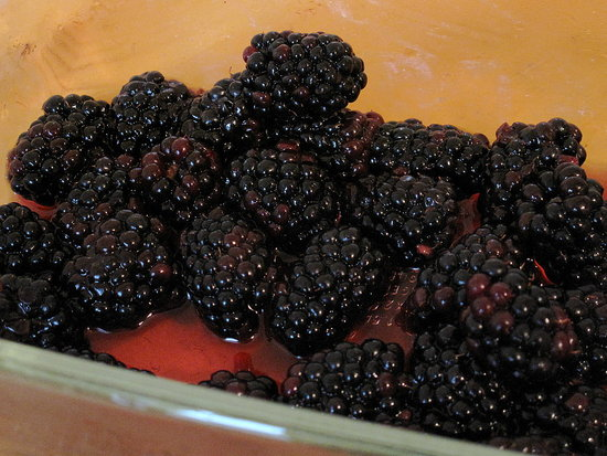 Fast & Easy Recipe for Blackberry Fool With Calvados 2010-08-03 13:16:14