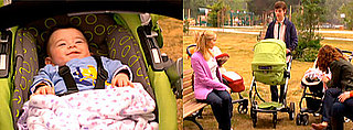 Yippity Sippity Stroller on Weeds Made Shane Steal