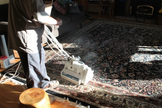 This vacuum-like tool pushed the Rx For Fleas powder deep into our area rugs.