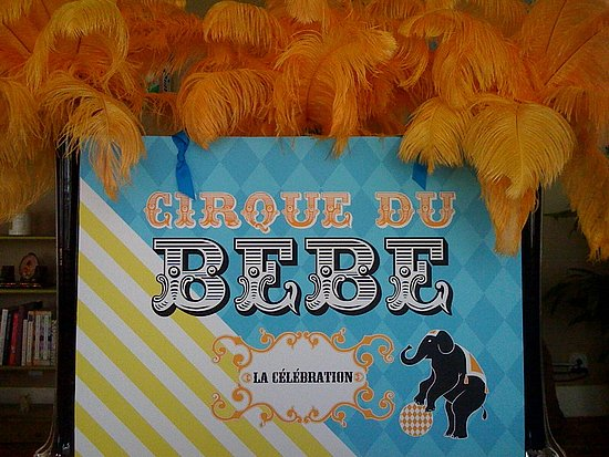 Cirque du Bebe *our baby shower* May 15, 2010
