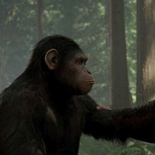 Rise of the Planet of the Apes Wins the Box Office for Second Weekend in a Row