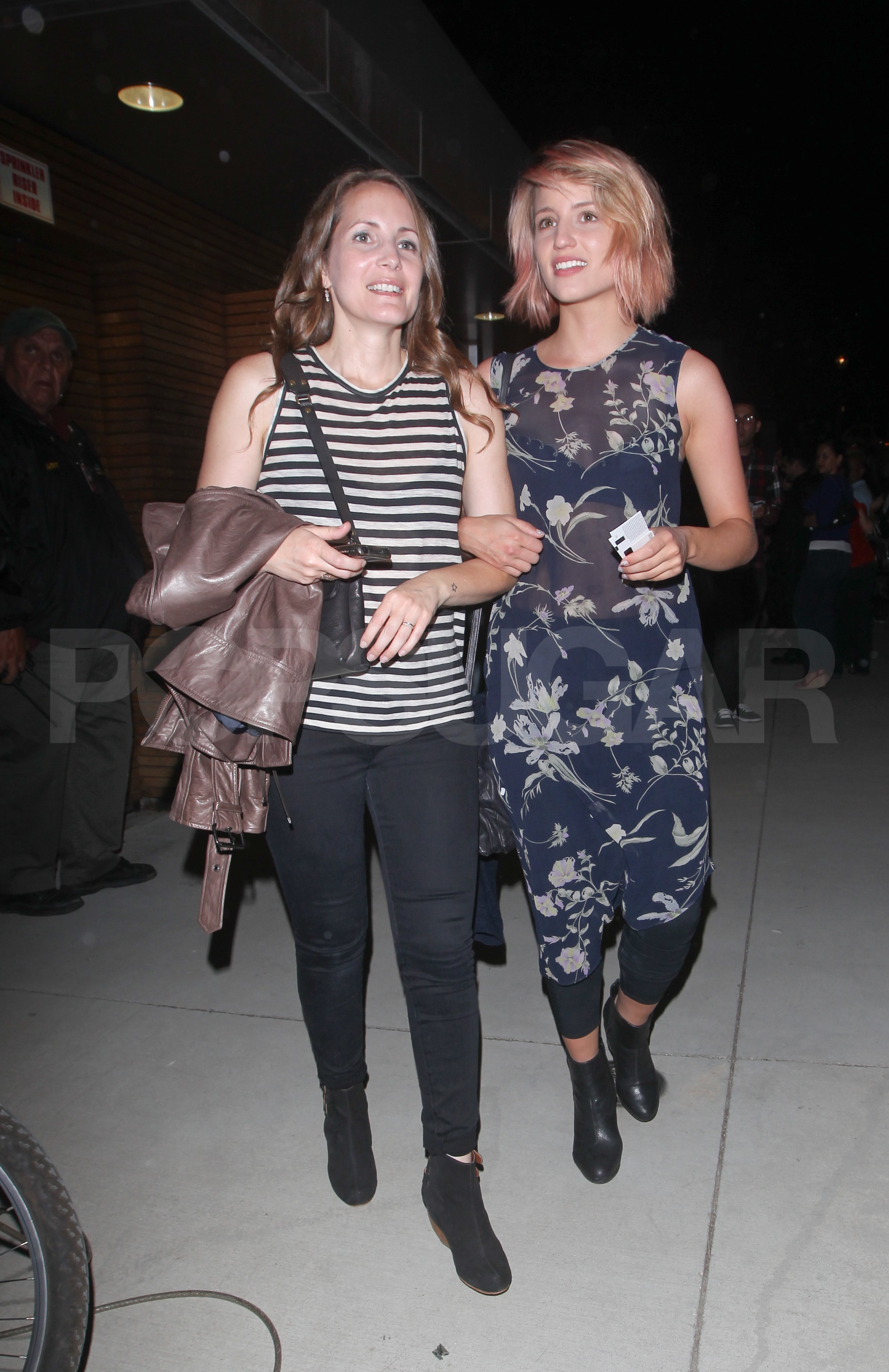 Pink-haired Dianna Agron at Adele's LA show.