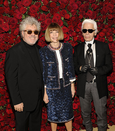 2011 MoMA Almodovar Film Benefit Red Carpet Fashion [Pictures]