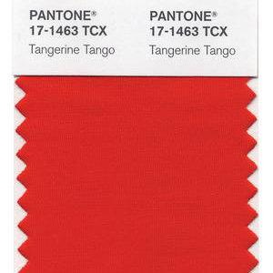Tangerine Tango Nursery Ideas