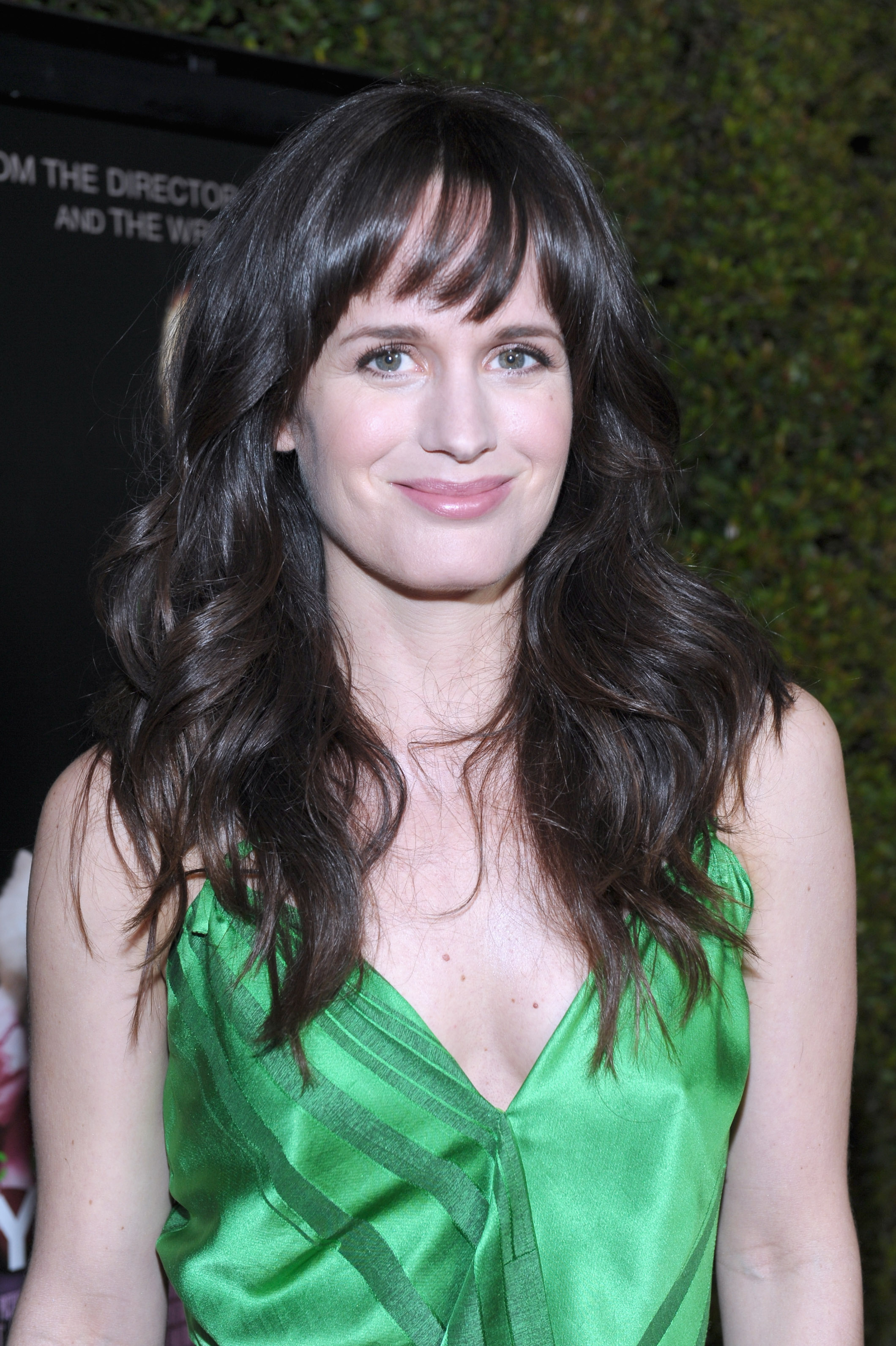 Elizabeth Reaser hit the red carpet in LA for the premiere of Young Adult.