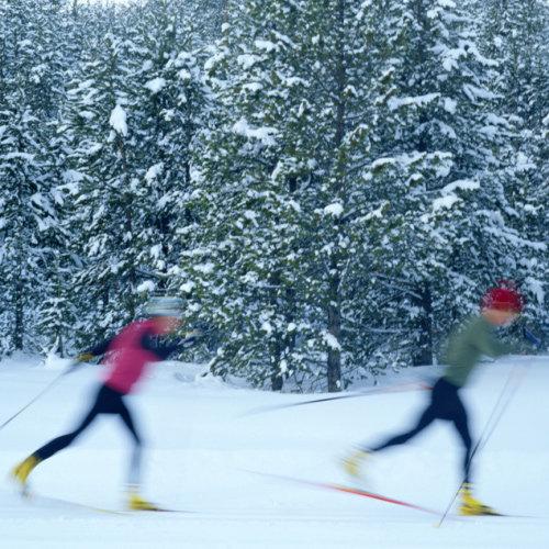Beginner Cross-Country Skiing Tips