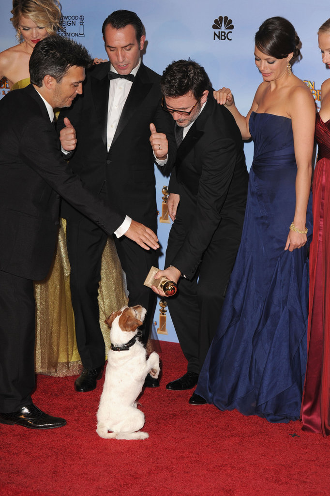 Uggie checks out his team's just rewards . . . a Golden Globe award!