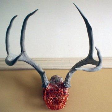 Modern Antlers Update