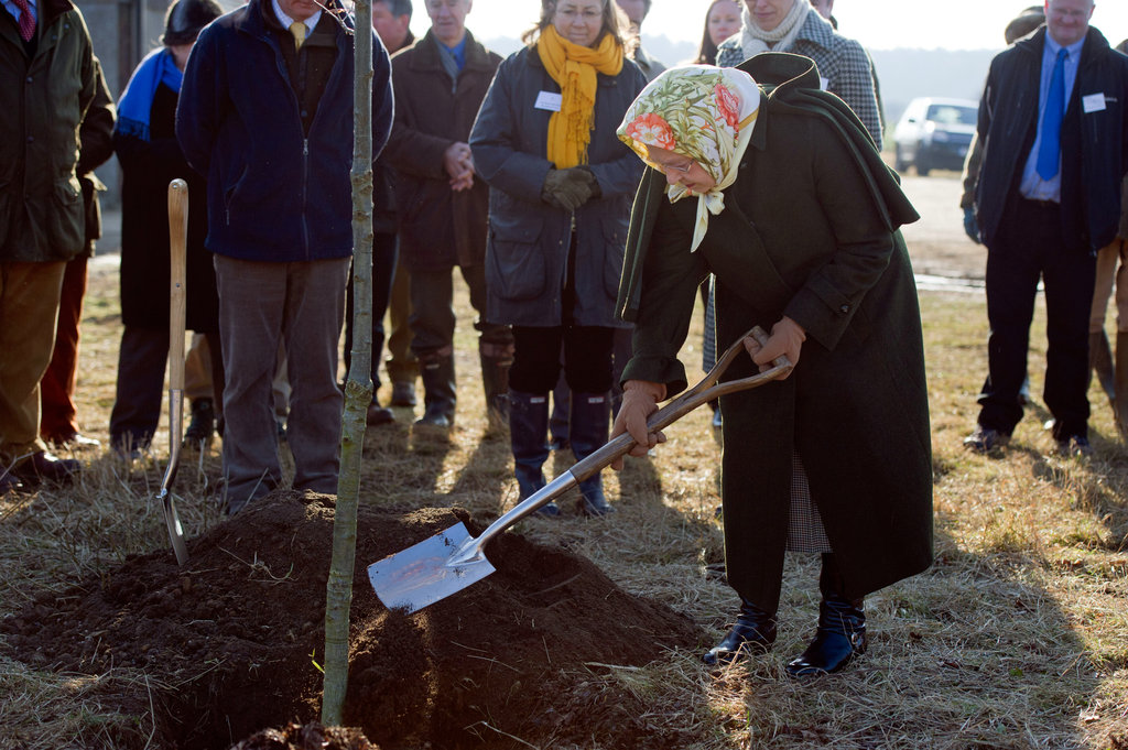 The queen helped plant a tree during a ceremony in the Diamond Jubilee Wood on her Sandringham estate on Feb. 3.