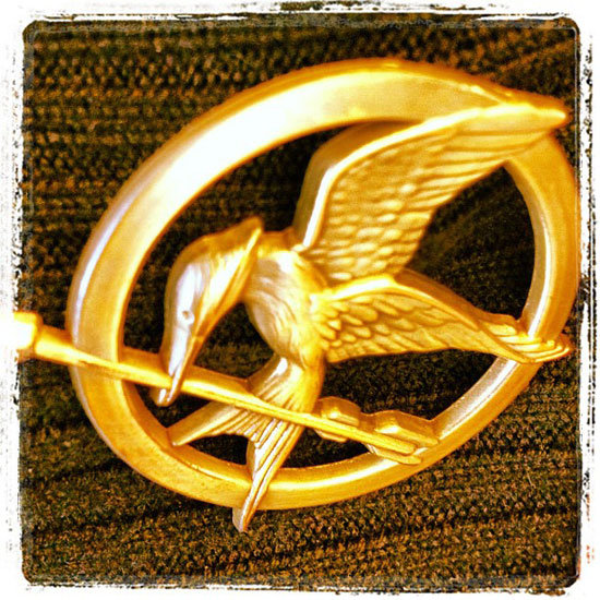 Hunger Games Instagram Mockingjay Pin Picture