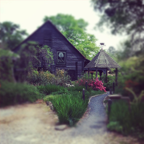 A Bed and Breakfast Vacation on an Organic Farm