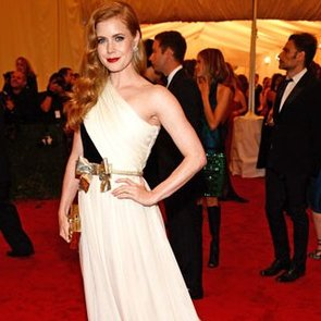 Pictures of Amy Adams in Giambattista Valli Gown on the Red Carpet at the 2012 Met Costume Institue Gala