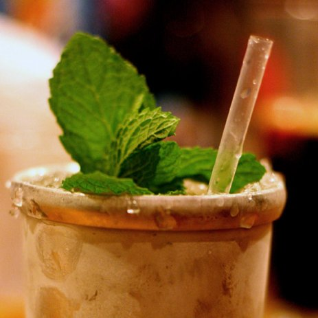 Mint Julep Tips