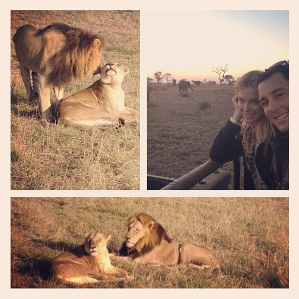 Jennifer Hawkins and Jake Wall enjoyed an early morning safari in South Africa. Source: Instagram user jenhawkins_