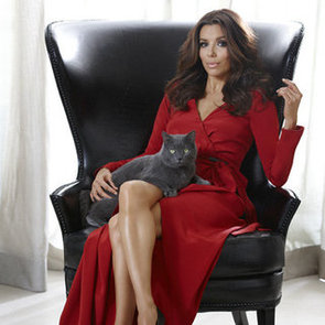 Eva Longoria Interview on Dine Commercial, Desperate Housewives, Cooking, Fashion and More