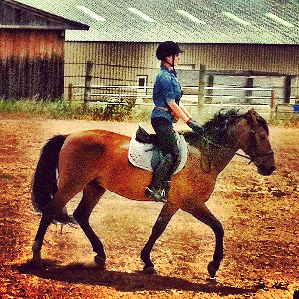 Katherine Heigl showed off her horseback riding skills. Source: Instagram user joshbkelley