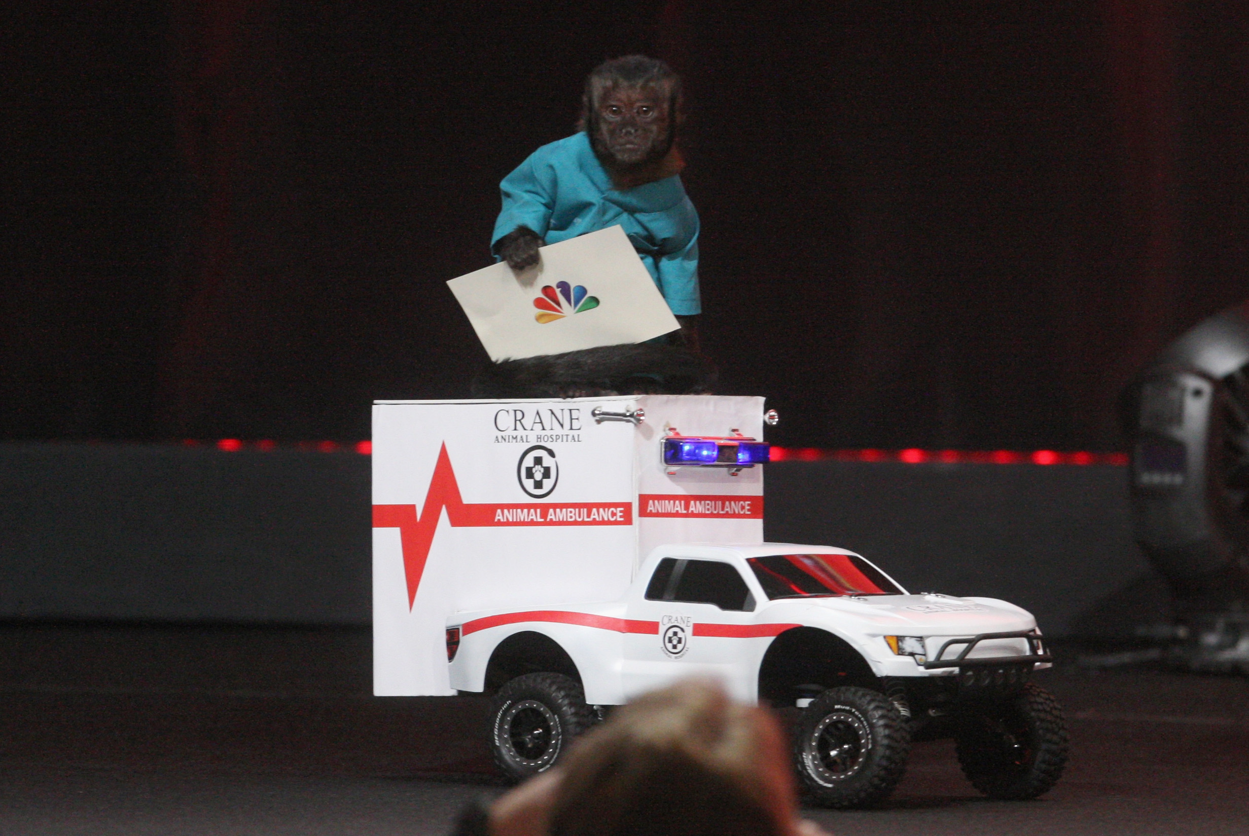 Crystal the monkey upstaged her costars when she came out atop a tiny ambulance at Animal Practice's panel.