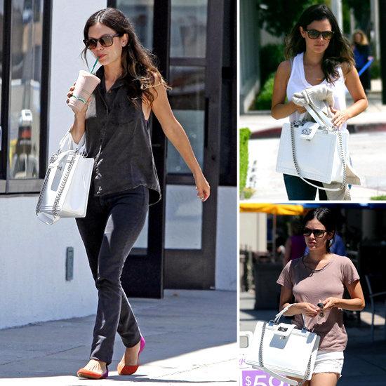 Rachel Bilson's Chanel Boy Handbag