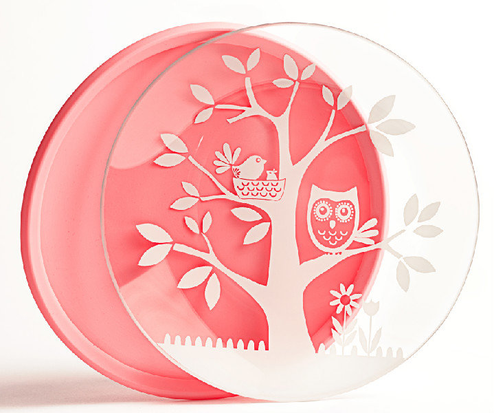 Two-Pack Brinware Toddler Plate ($20)