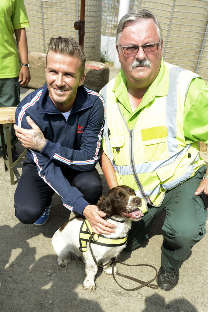 David Beckham met a security guard and sniffer dog.
