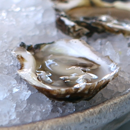 How to Shuck Oysters | Video