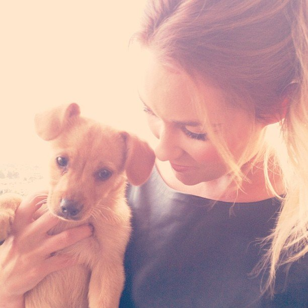 Lauren Conrad welcomed a new puppy, Fitz, into her life. Source: Instagram user laurenconrad