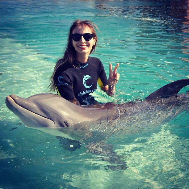 Harley Viera-Newton and her new friend, Michelle, the dolphin. Source: Twitter User HarleyVNewton