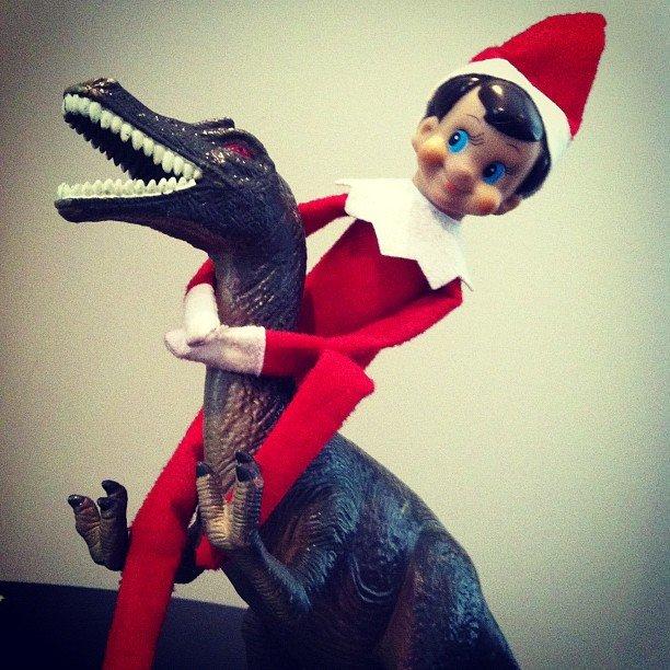 Dinosaur Wrangling