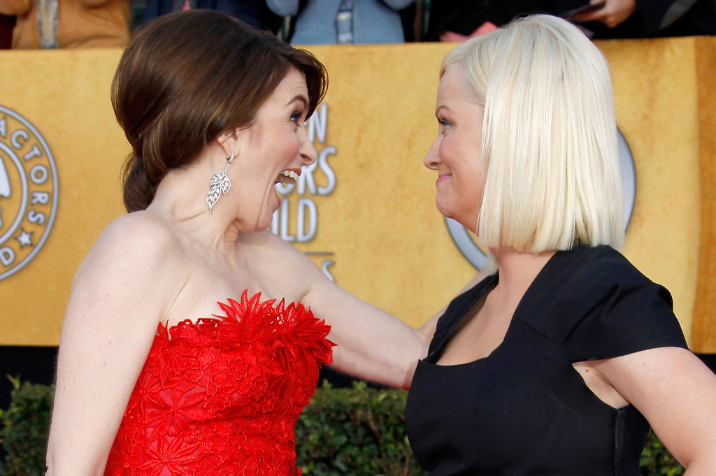 Tina and Amy made funny faces at each other on the red carpet for the 2011 Screen Actors Guild Awards.