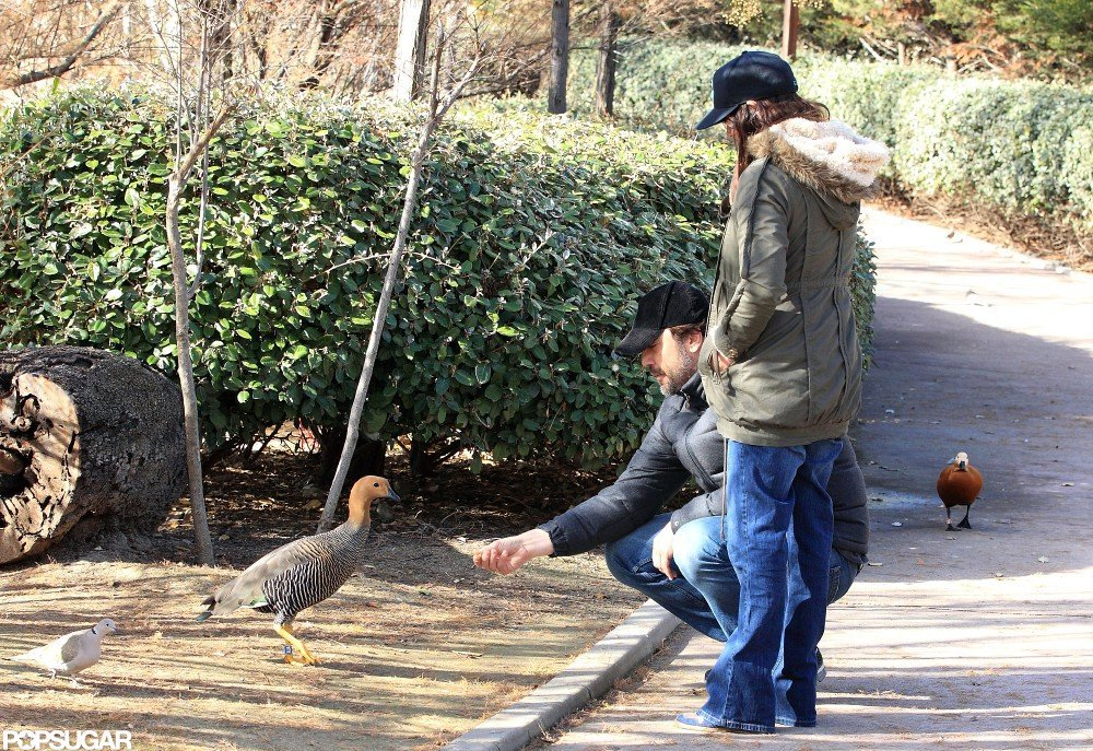 Penélope Cruz watched as Javier Bardem bent down to feed some ducks at a park in Madrid.