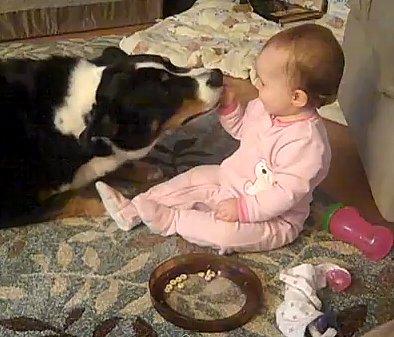 Dog is Baby's Best Friend (VIDEO)