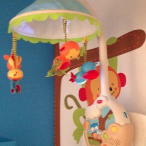 New Baby Products 2013