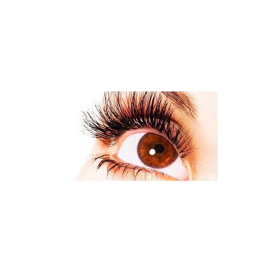 The Lash Studio Lift, Tint & Brow, $105