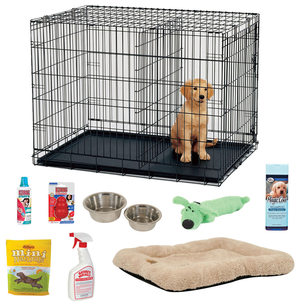 Perfect For Puppy