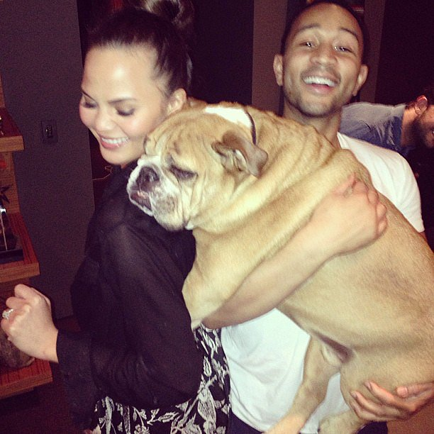 Chrissy Teigen and John Legend had a dance party with their dog. Source: Instagram user chrissy_teigen