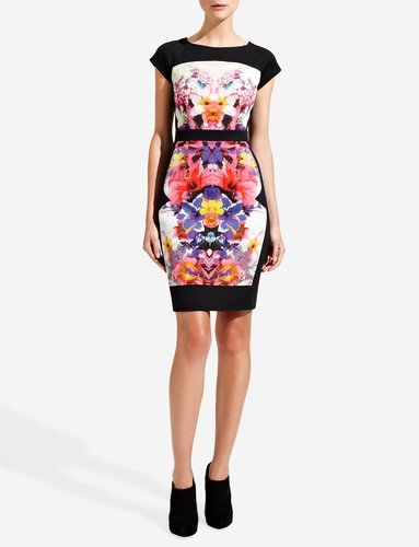 Forenza Print & Ponte Sheath Dress