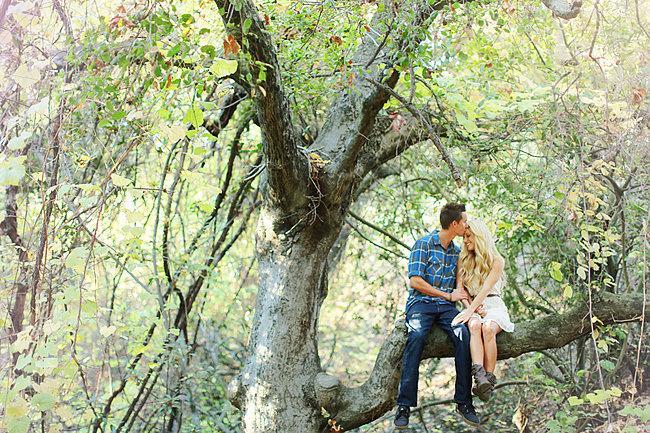 Sit in a Tree
