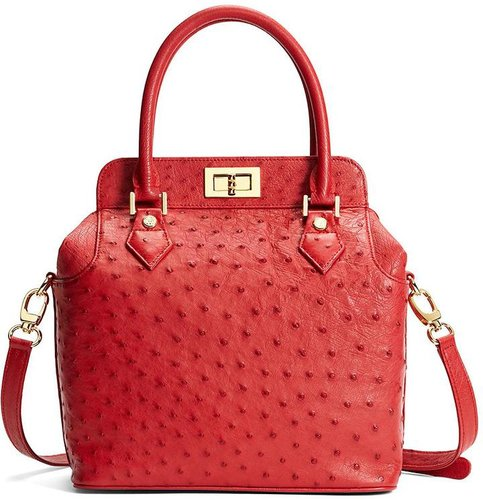 Ostrich Top Satchel